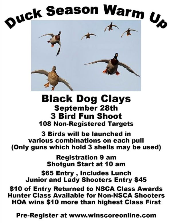 Black Dog Clays